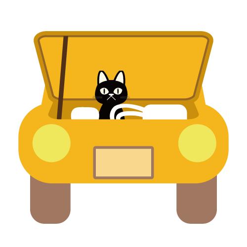 猫バンバン2