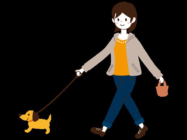 愛犬とのお散歩